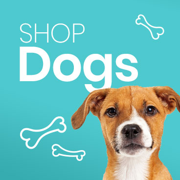Me & My Pets - Shop Dogs
