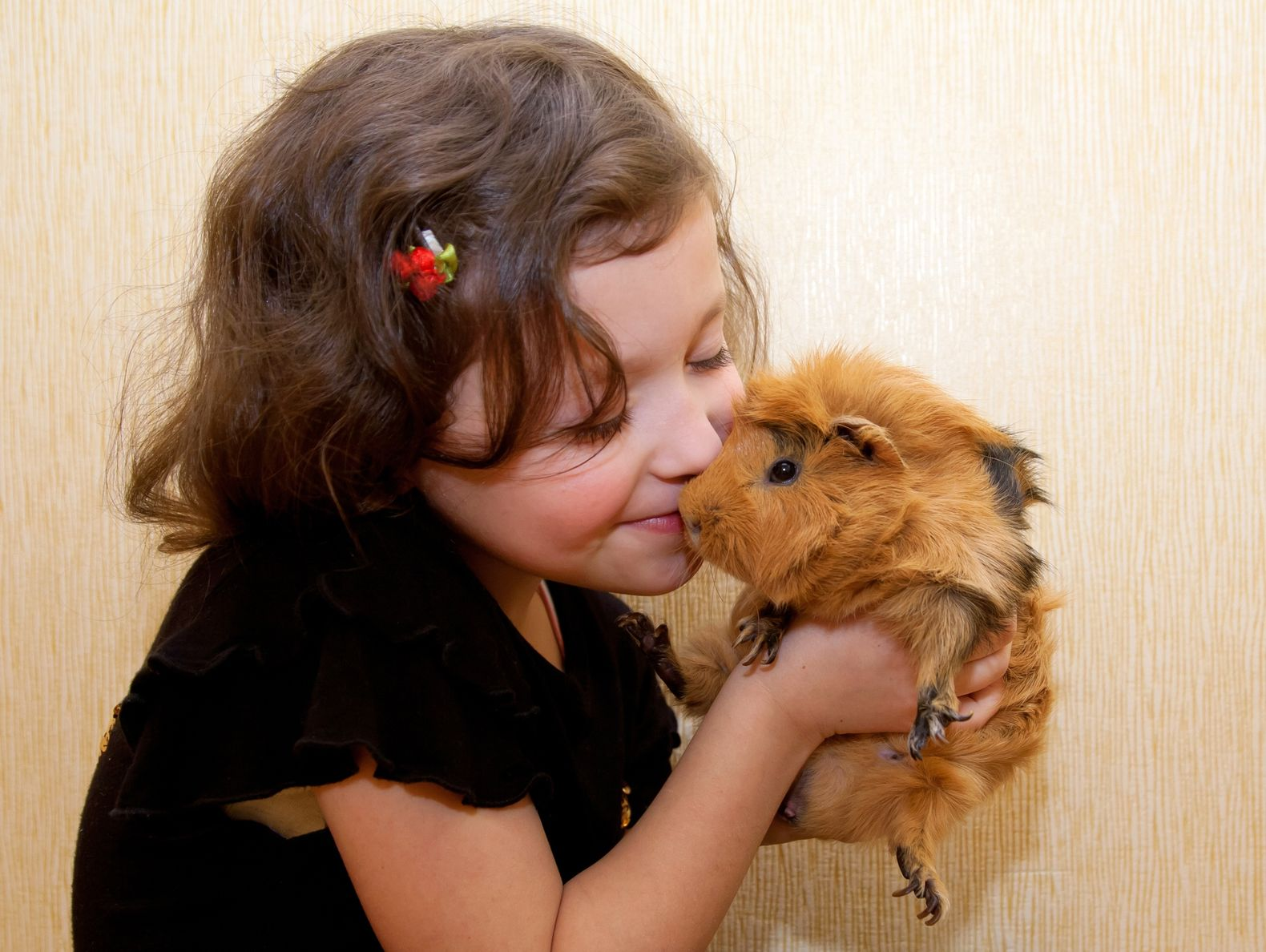 young-girl-cuddling-guinea-pig
