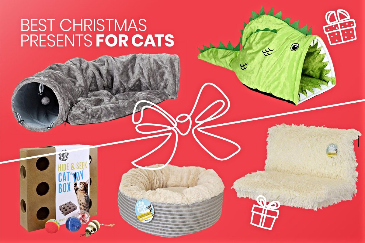 red graphic with christmas gifts for cats on