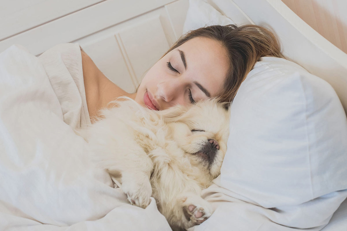 image-of-sleeping-puppy-with-girl
