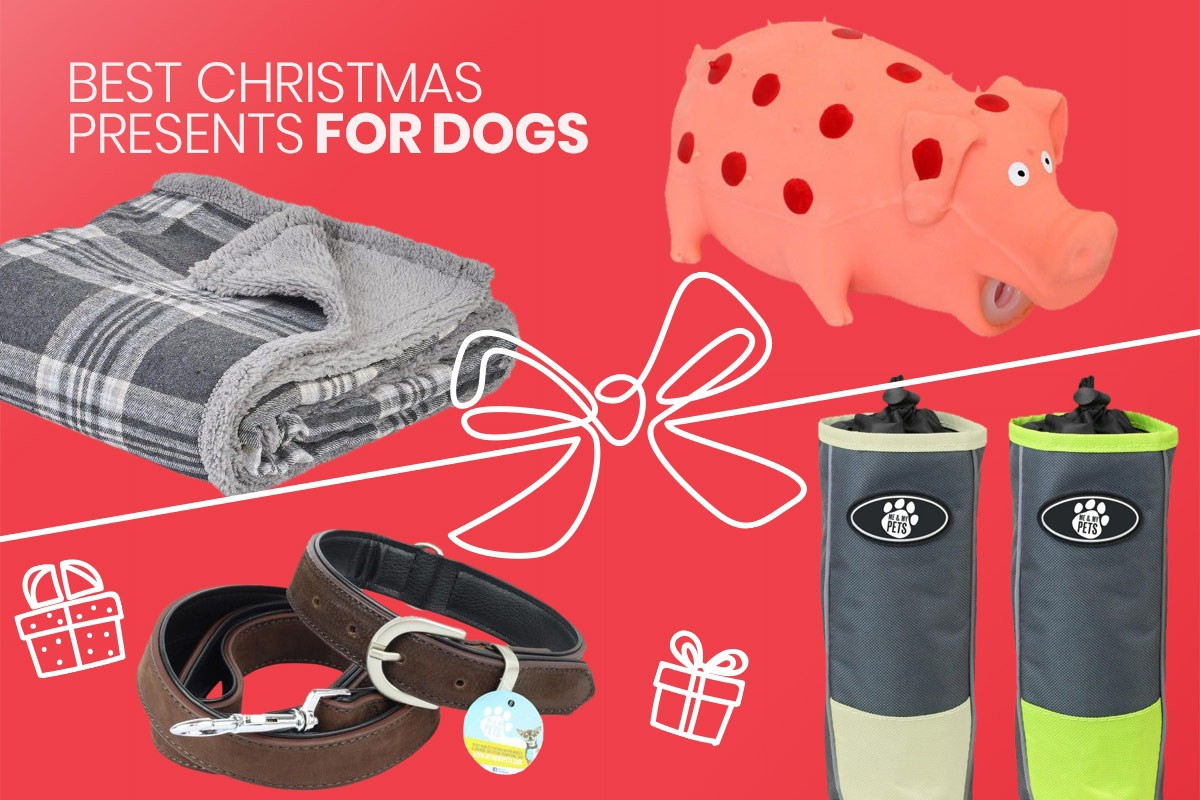 red graphic with christmas gifts for dogs