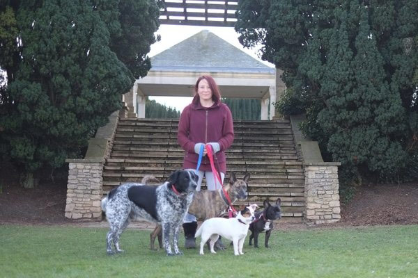 nicola the director of wagtails holding four leads with dogs on them at a park
